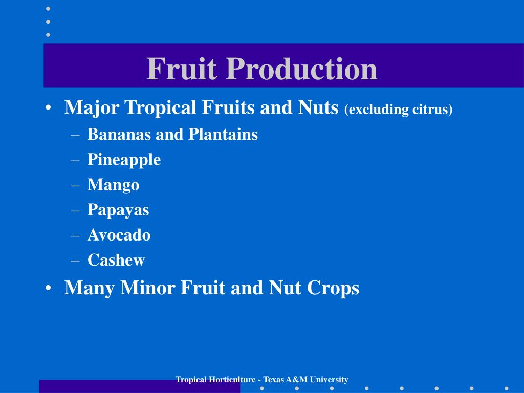 Fruit Production