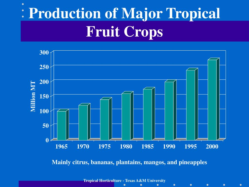 Production of Major Tropical Fruit Crops