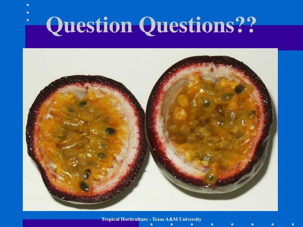 Question Questions??