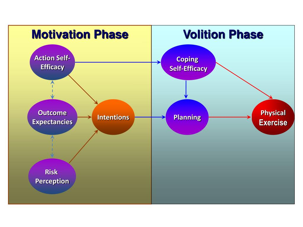 Motivation Phase