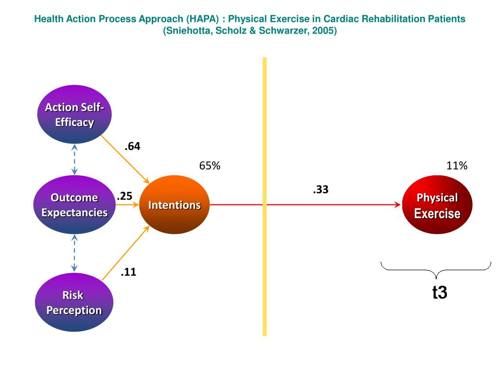 Health Action Process Approach (HAPA) : Physical Exercise in Cardiac Rehabilitation Patients
