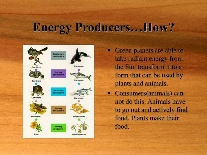 Energy producers how