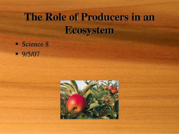 The role of producers in an ecosystem l.jpg