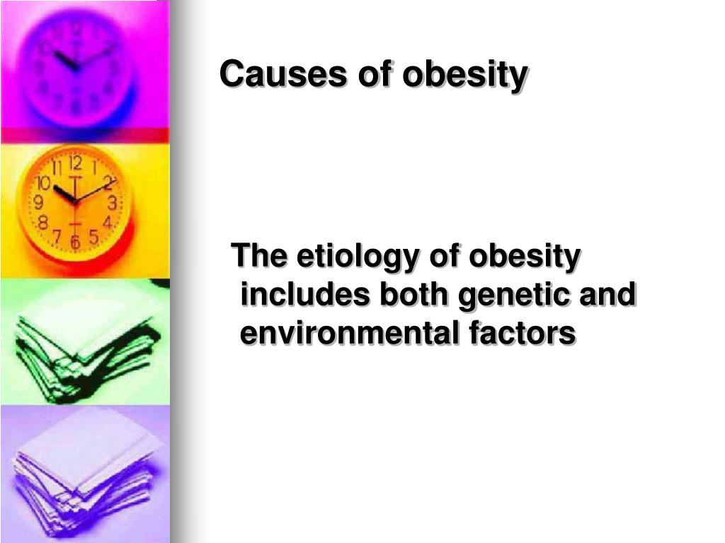environmental factors of obesity Timothy frayling, professor of human genetics at the university of exeter thinks that genetic factors are the main driver for obesity in today's environment.