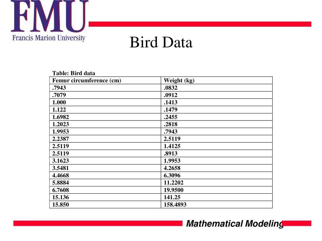 Bird Data