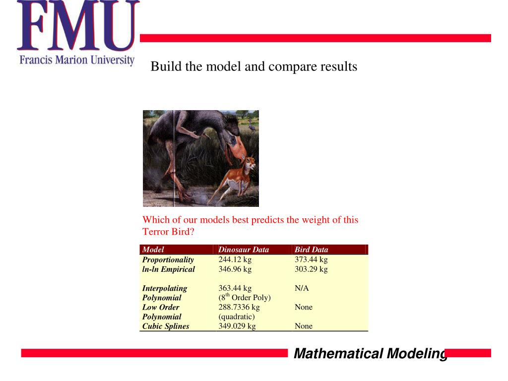 Build the model and compare results