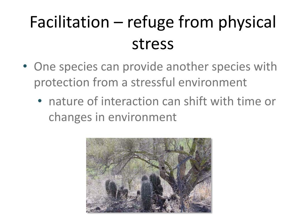 Facilitation – refuge from physical stress