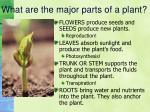 what are the major parts of a plant3