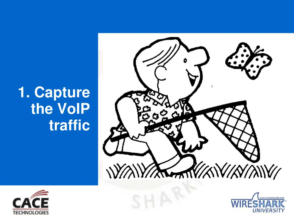 1. Capture the VoIP traffic