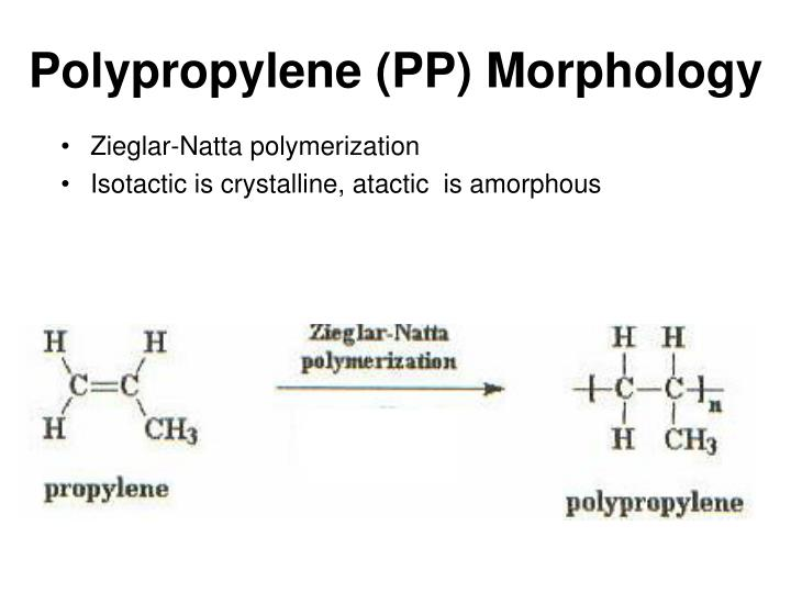 Polypropylene (PP) Morphology