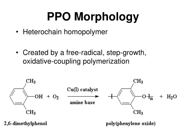 PPO Morphology