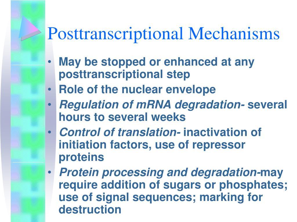 Posttranscriptional Mechanisms