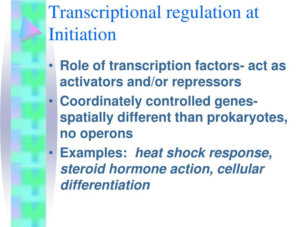 Transcriptional regulation at Initiation