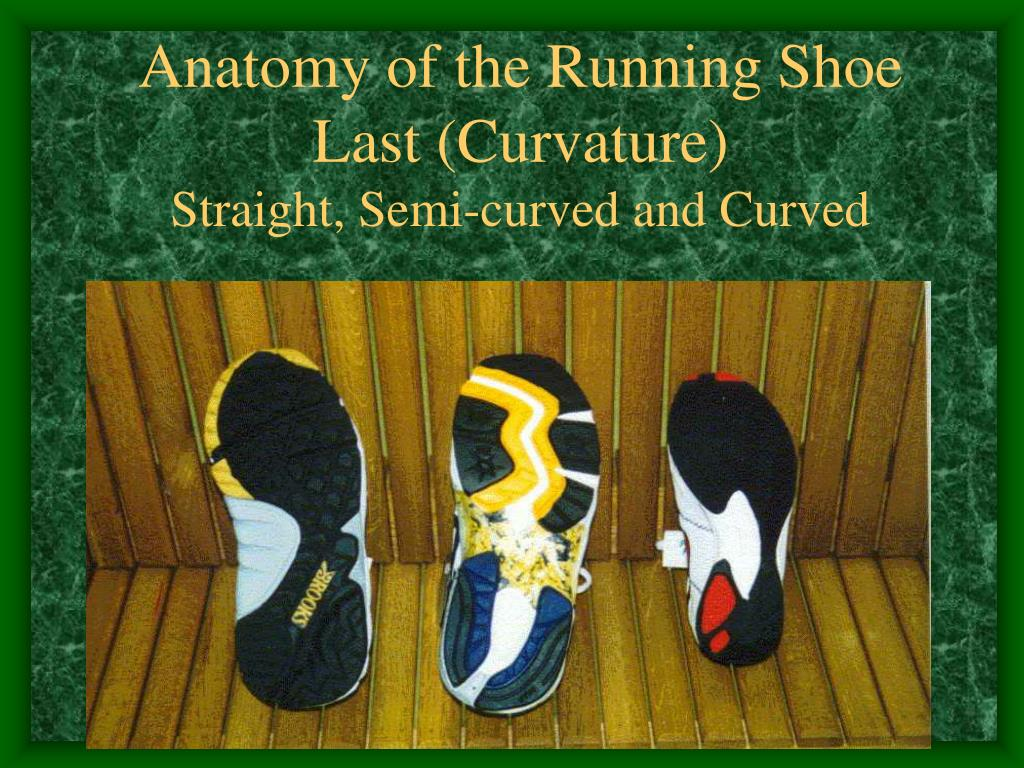 Anatomy of the Running Shoe Last (Curvature)