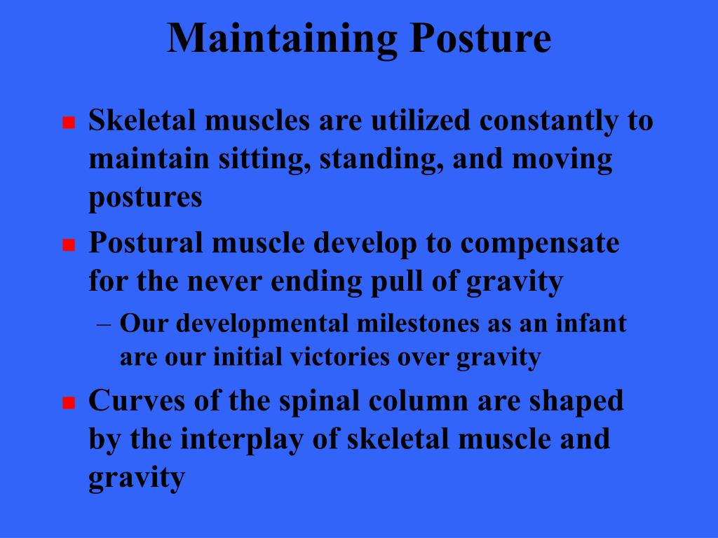 Maintaining Posture