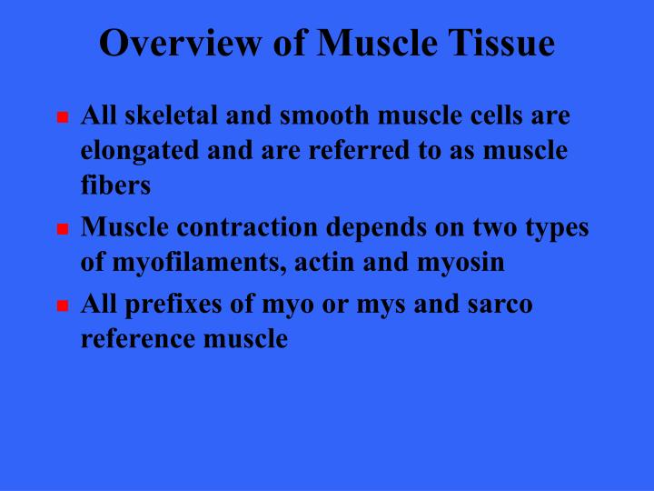 Overview of muscle tissue3