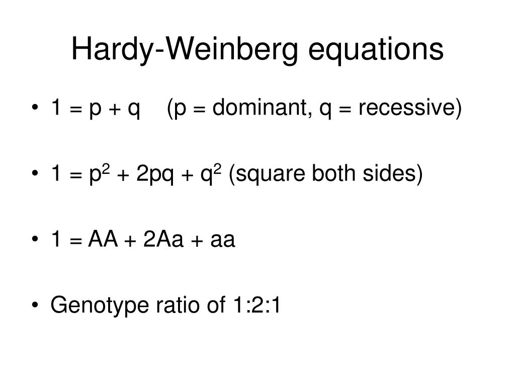 Hardy-Weinberg equations