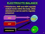 electrolyte balance6