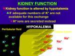 kidney function72