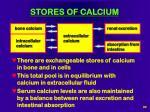stores of calcium