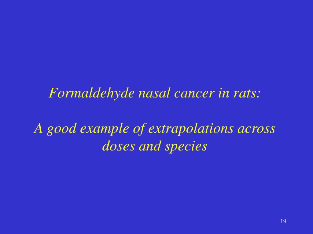 Formaldehyde nasal cancer in rats: