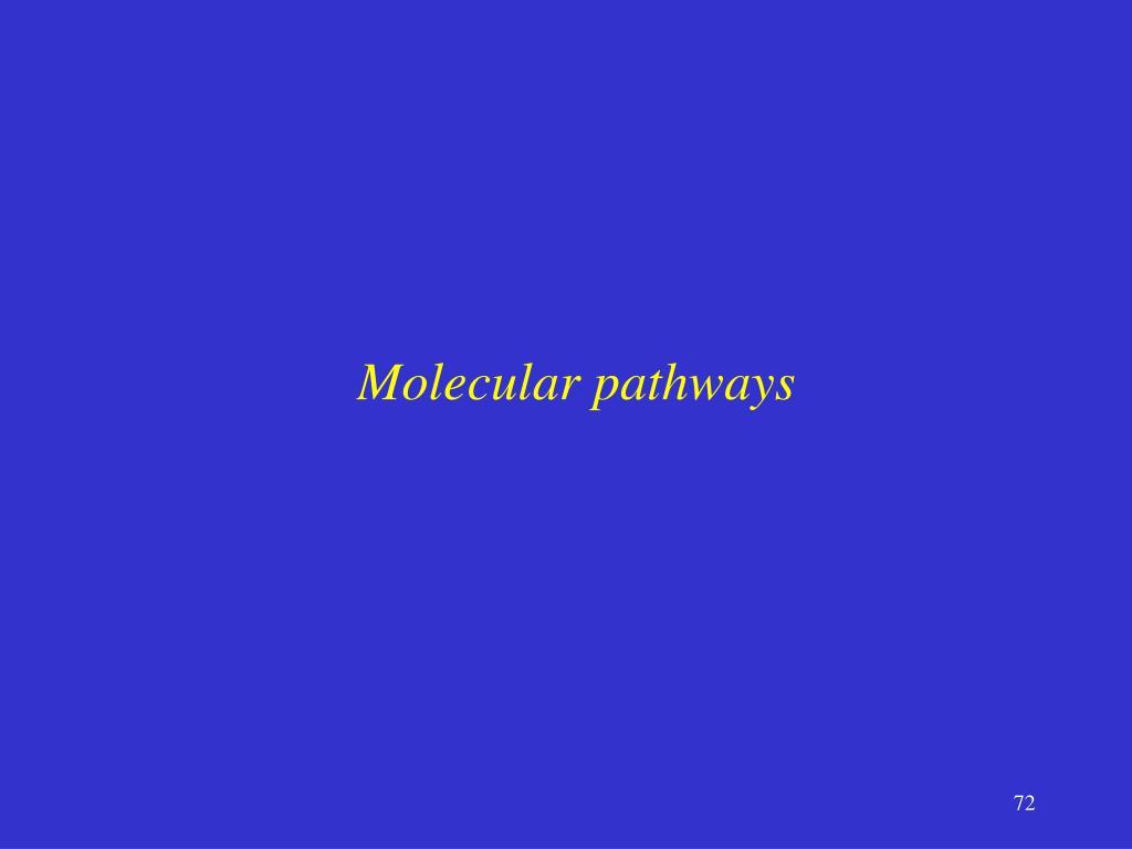 Molecular pathways
