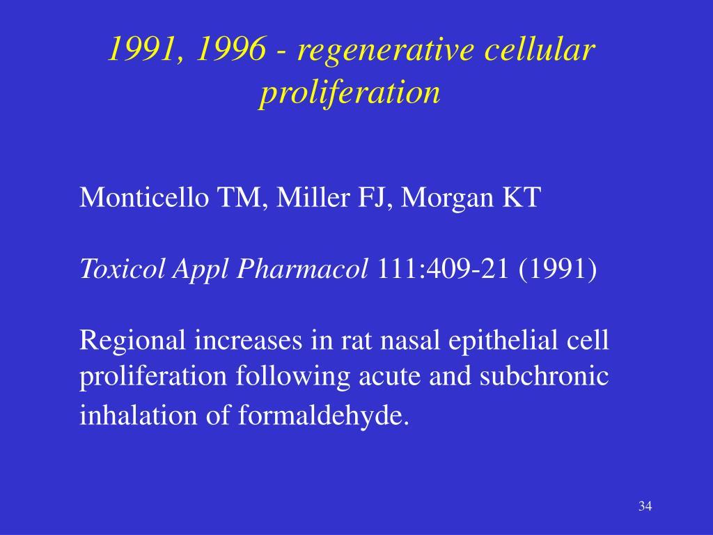 1991, 1996 - regenerative cellular proliferation