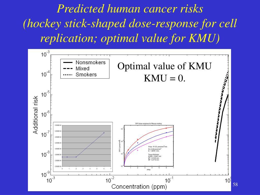 Predicted human cancer risks