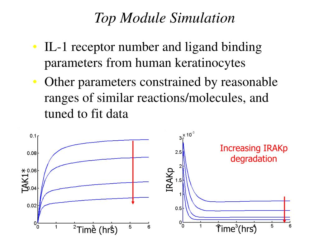 Top Module Simulation