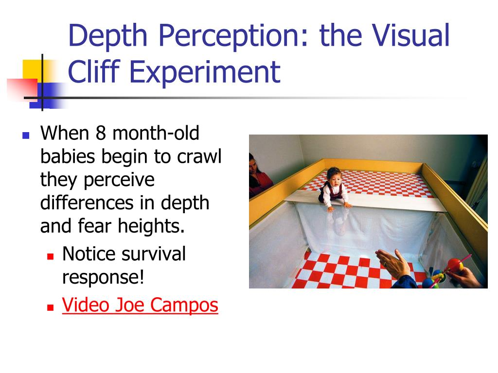Depth Perception: the Visual Cliff Experiment