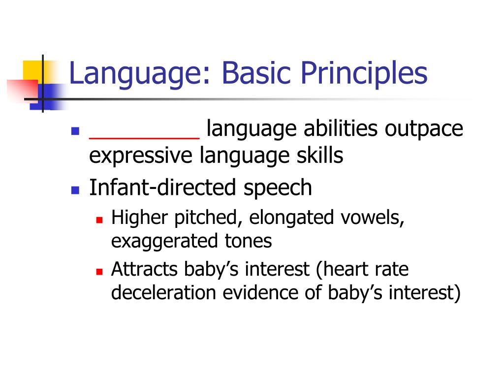 Language: Basic Principles