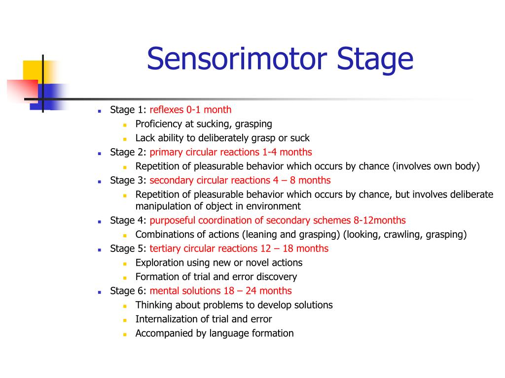 Sensorimotor