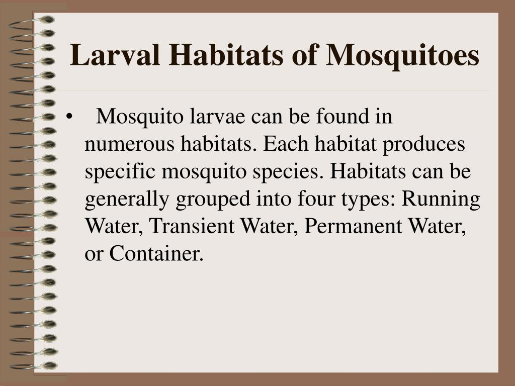 Larval Habitats of Mosquitoes
