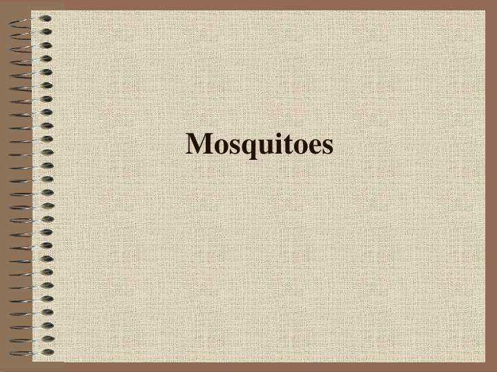 Mosquitoes l.jpg