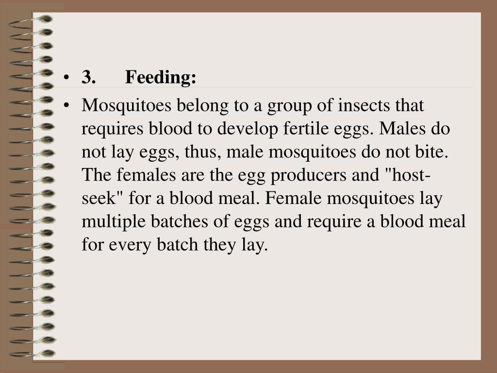 3. Feeding: