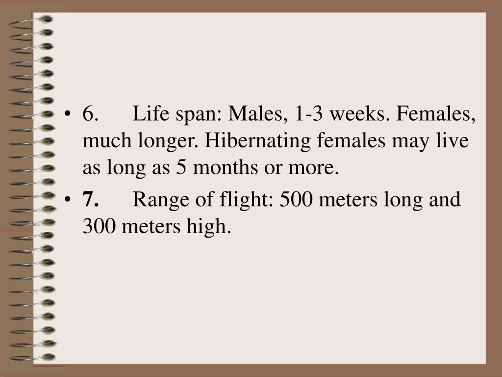 6.      Life span: Males, 1-3 weeks. Females, much longer. Hibernating females may live as long as 5 months or more.