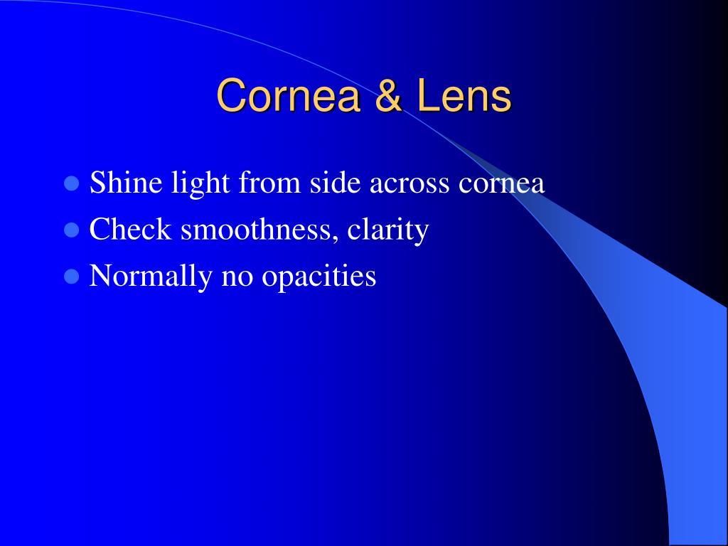 Cornea & Lens
