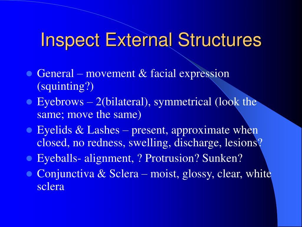 Inspect External Structures