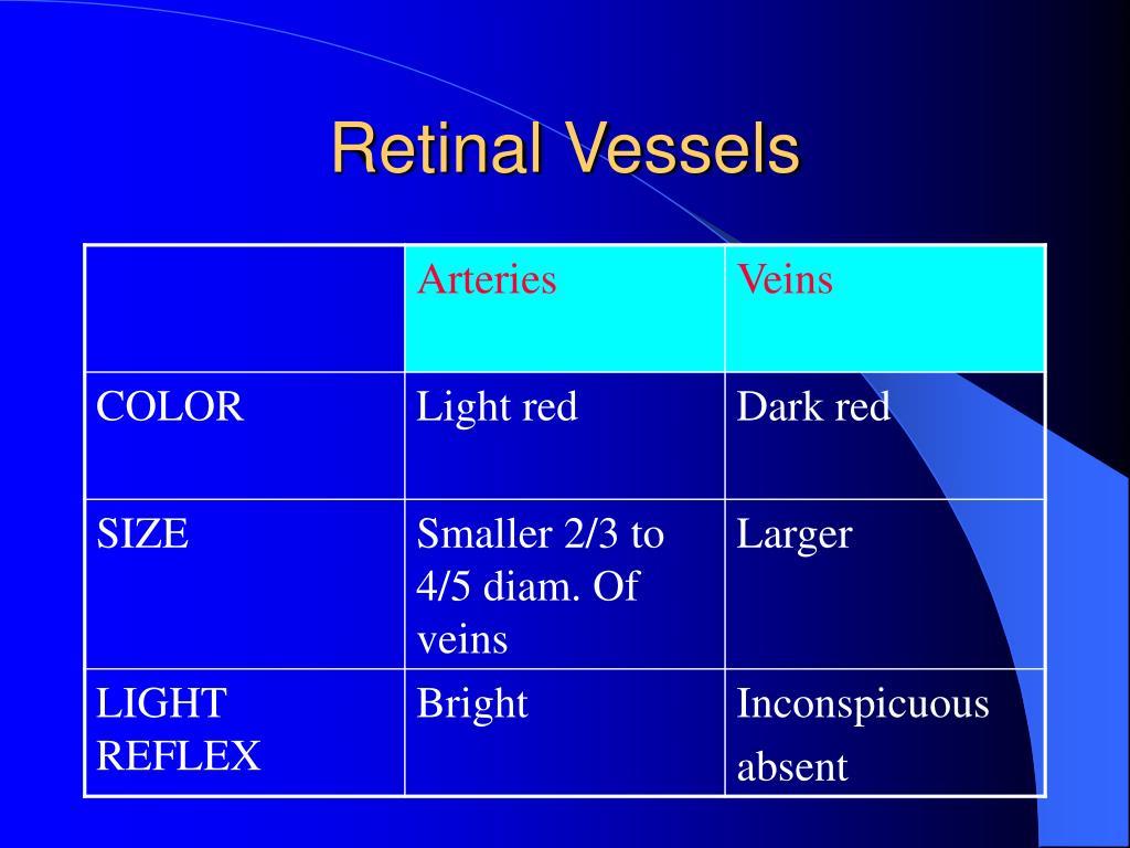 Retinal Vessels