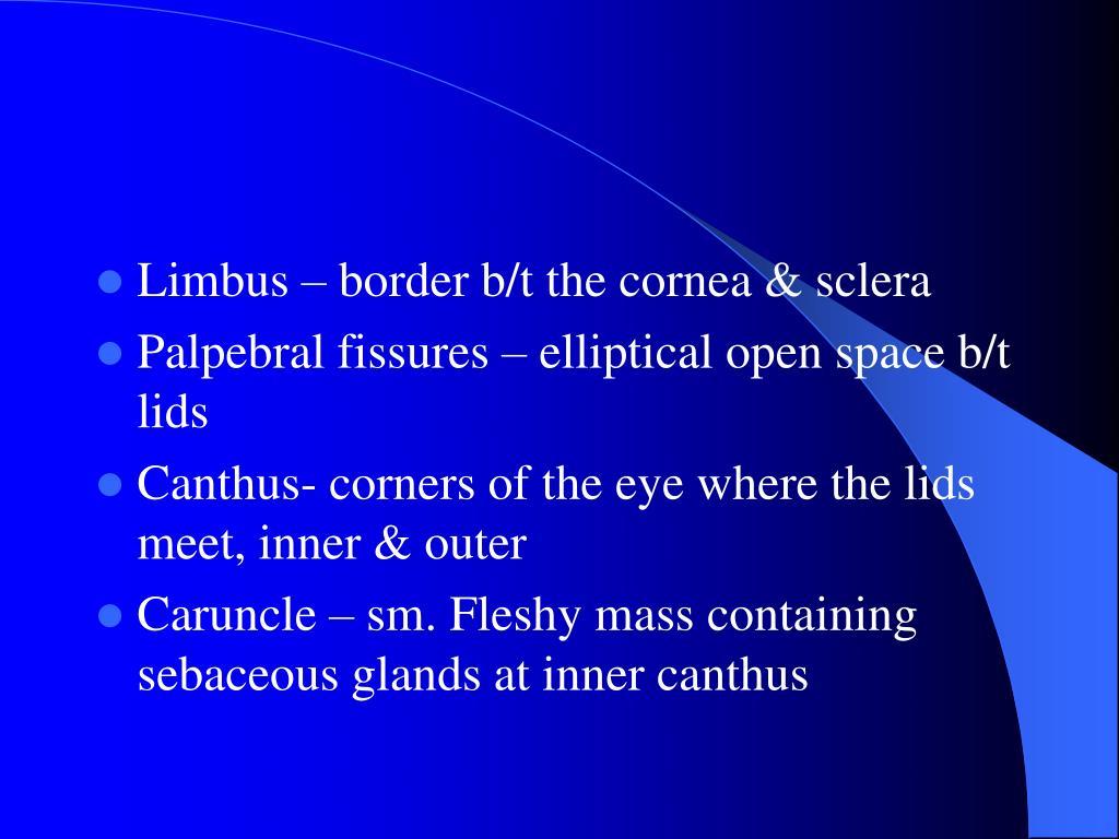 Limbus – border b/t the cornea & sclera
