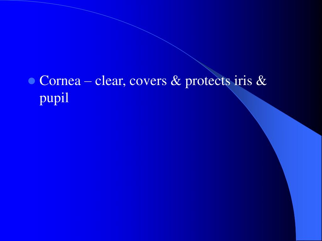 Cornea  clear, covers & protects iris & pupil