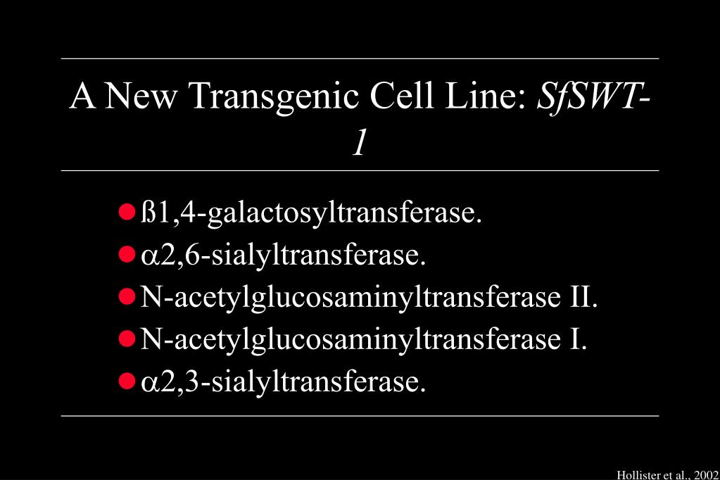 A New Transgenic Cell Line: