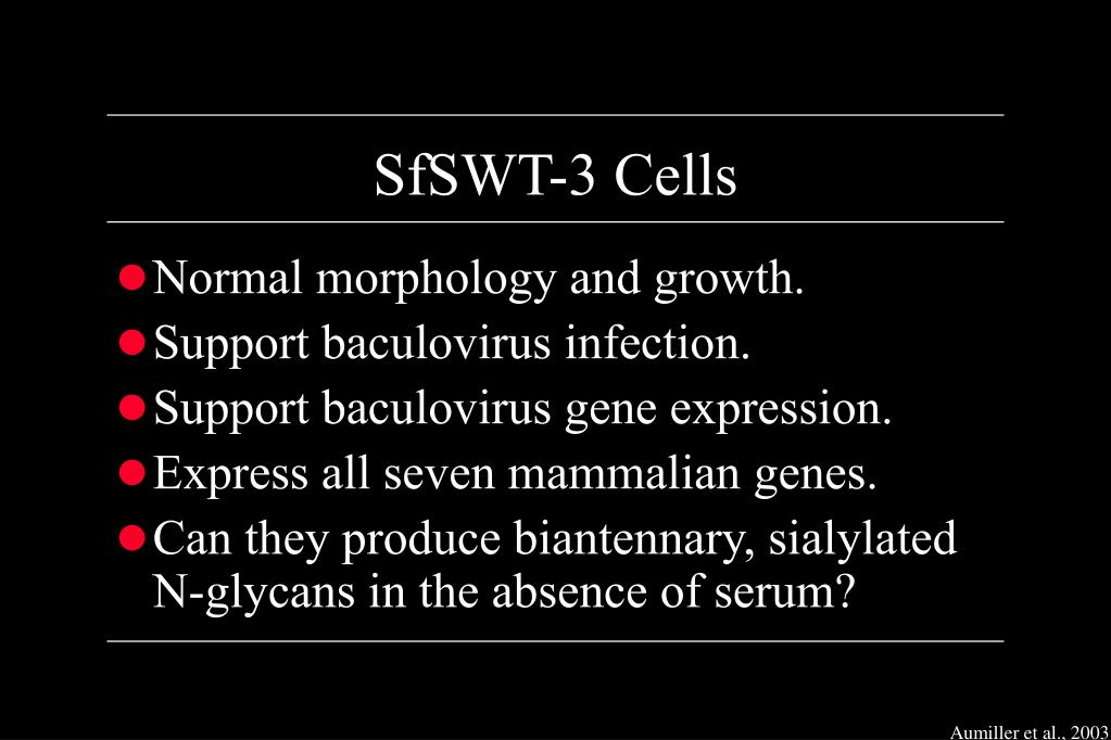 SfSWT-3 Cells