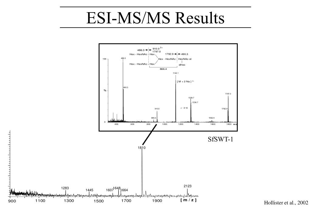 ESI-MS/MS Results