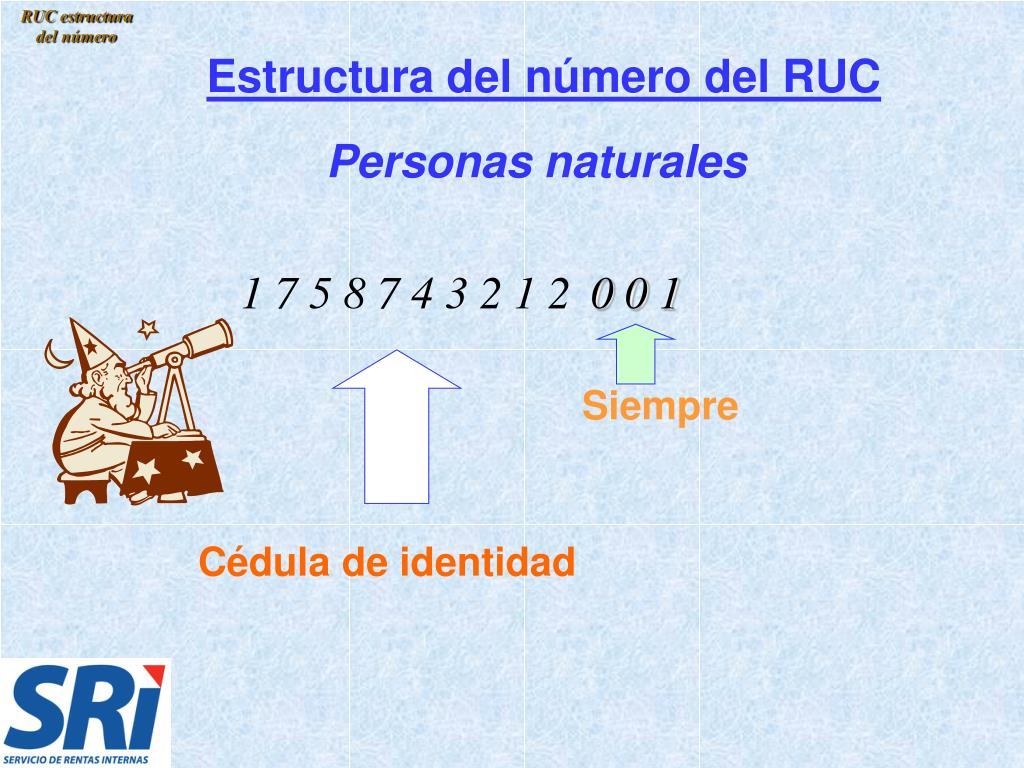 RUC estructura del número