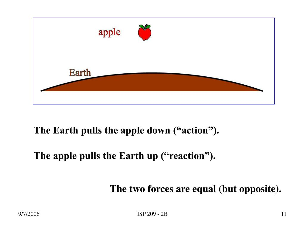 "The Earth pulls the apple down (""action"")."