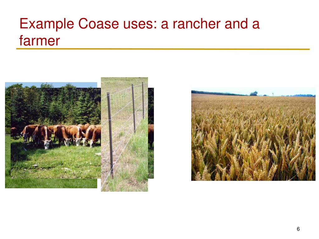 Example Coase uses: a rancher and a farmer
