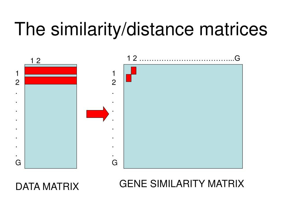 The similarity/distance matrices