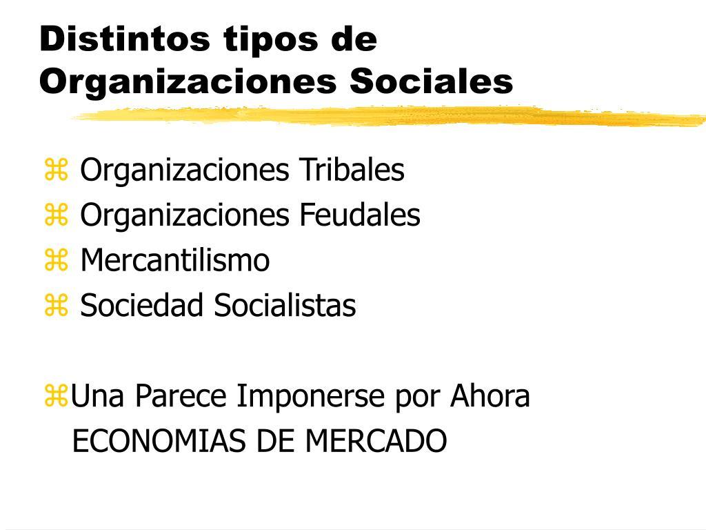 Distintos tipos de Organizaciones Sociales