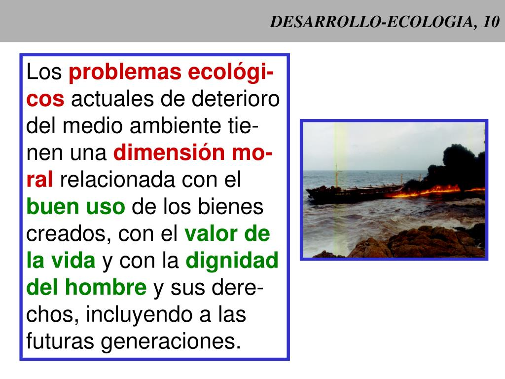 DESARROLLO-ECOLOGIA, 10
